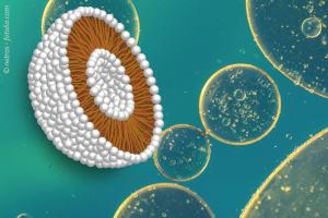 liposomales-Coenzym-Q10-300x200