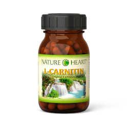 Nature-Vital-L-Carnitin-250x250